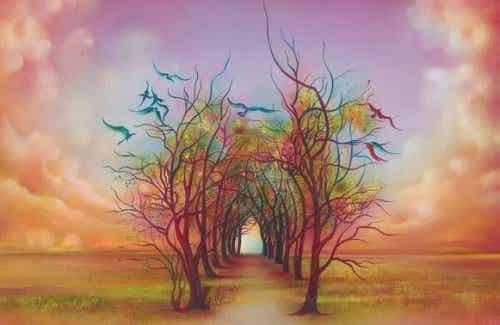 Ścieżka przez drzewa