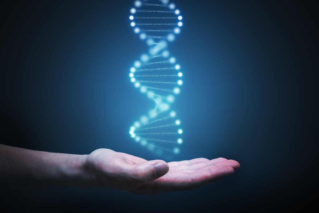 DNA na dłoni