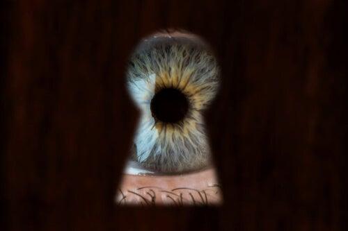 Voyeuryzm -  na czym tak naprawdę polega to zjawisko?