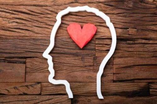 Serce w głowie - uczucia motywują umysł