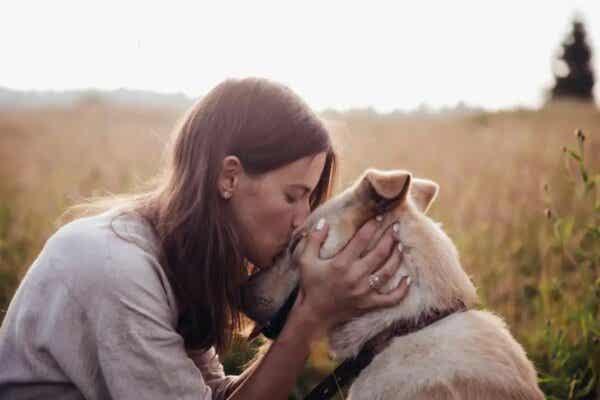 Kobieta całująca psa - miłość do zwierząt