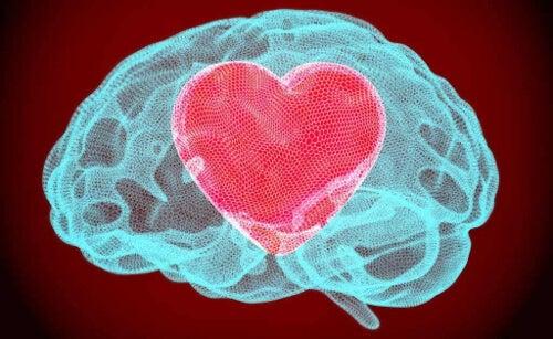 mózg i serce