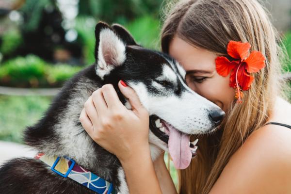 Wpływ zwierząt na zdrowie — czego dowodzi nauka