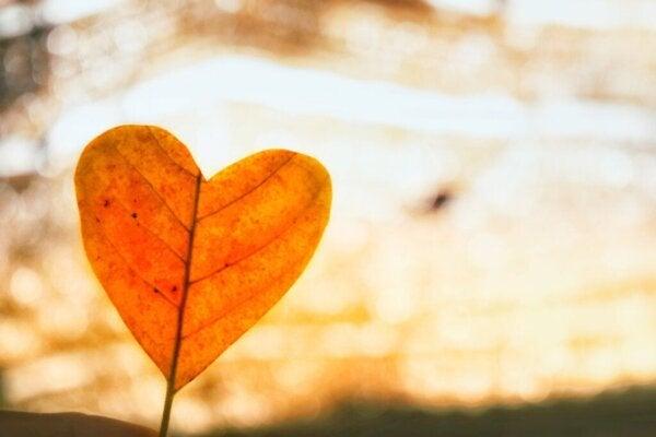 Bezwarunkowa miłość w przezwyciężeniu bólu rozstania